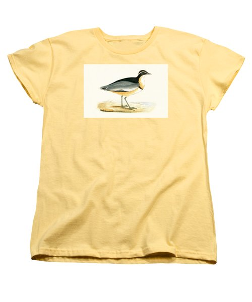 Black Headed Plover Women's T-Shirt (Standard Cut) by English School