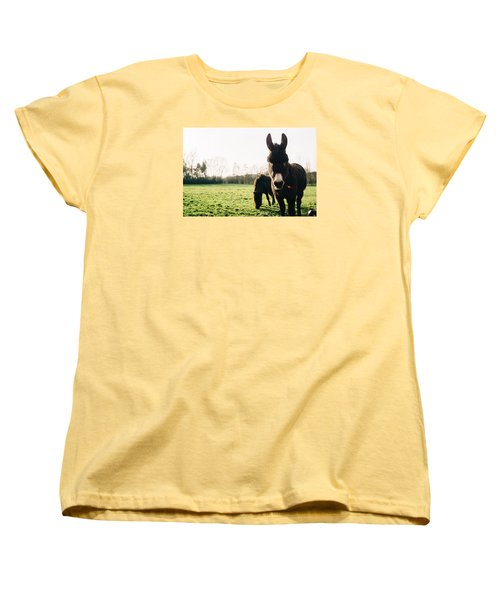 Donkey And Pony Women's T-Shirt (Standard Cut) by Pati Photography