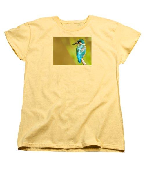 Kingfisher Women's T-Shirt (Standard Cut) by Paul Neville