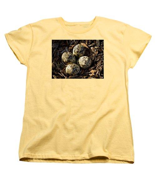 Quartet Of Killdeer Eggs By Jean Noren Women's T-Shirt (Standard Cut) by Jean Noren