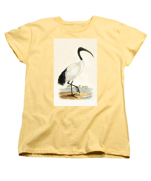 Sacred Ibis Women's T-Shirt (Standard Cut) by English School