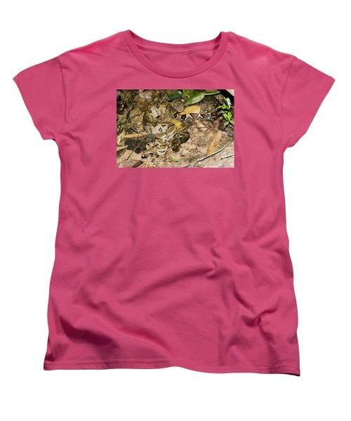Boa Constrictor Women's T-Shirt (Standard Cut) by Gregory G. Dimijian, M.D.