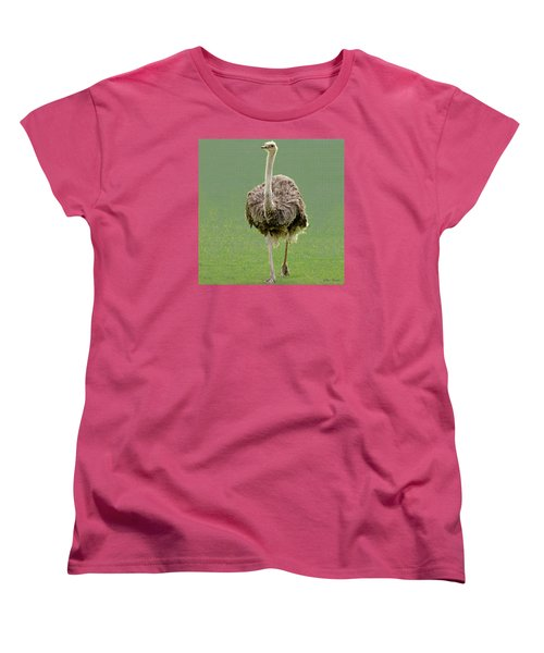 Emu Women's T-Shirt (Standard Cut) by Ellen Henneke