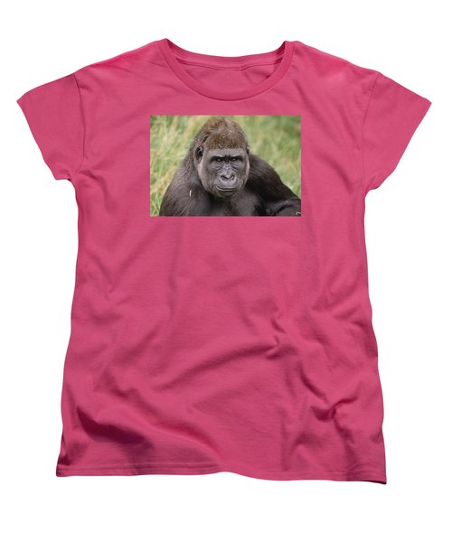 Western Lowland Gorilla Young Male Women's T-Shirt (Standard Cut) by Gerry Ellis