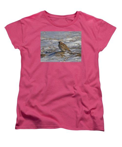 Winter Bird Women's T-Shirt (Standard Cut) by Jeff Swan