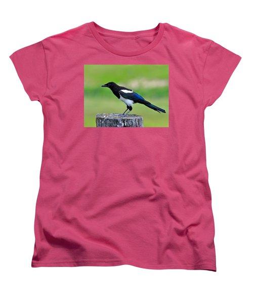 Black Billed Magpie Women's T-Shirt (Standard Cut) by Karon Melillo DeVega