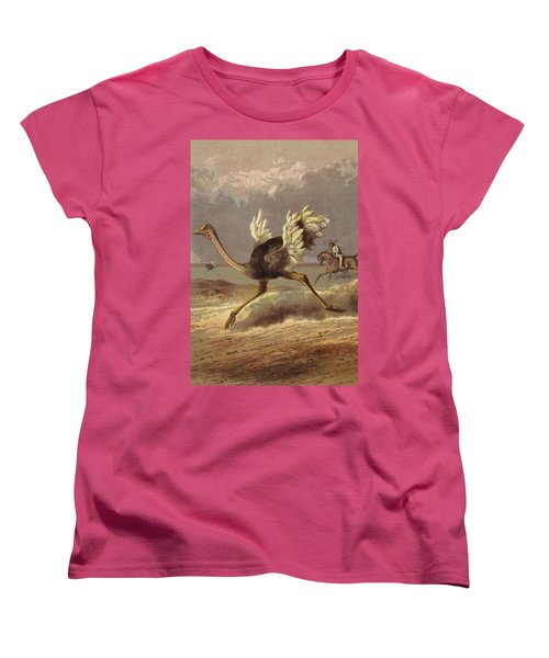 Chasing The Ostrich Women's T-Shirt (Standard Cut) by English School
