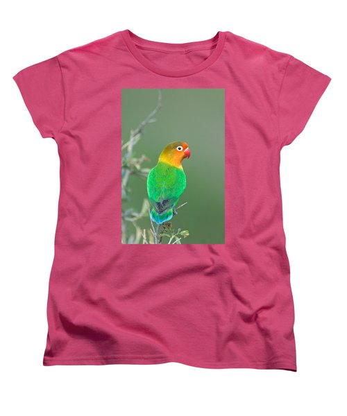 Close-up Of A Fischers Lovebird Women's T-Shirt (Standard Cut) by Panoramic Images