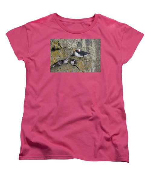 Least Auklets Perched On A Narrow Ledge Women's T-Shirt (Standard Cut) by Milo Burcham