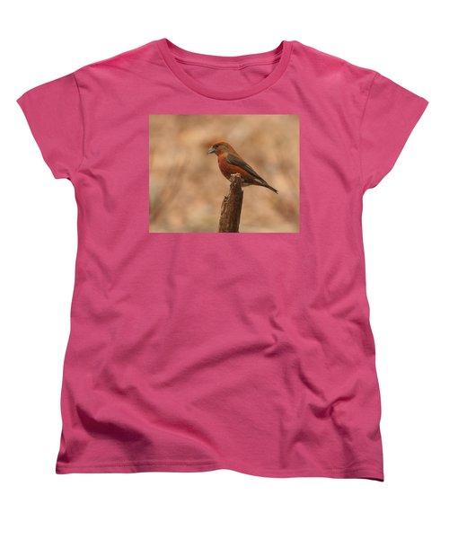 Red Crossbill Women's T-Shirt (Standard Cut) by Charles Owens