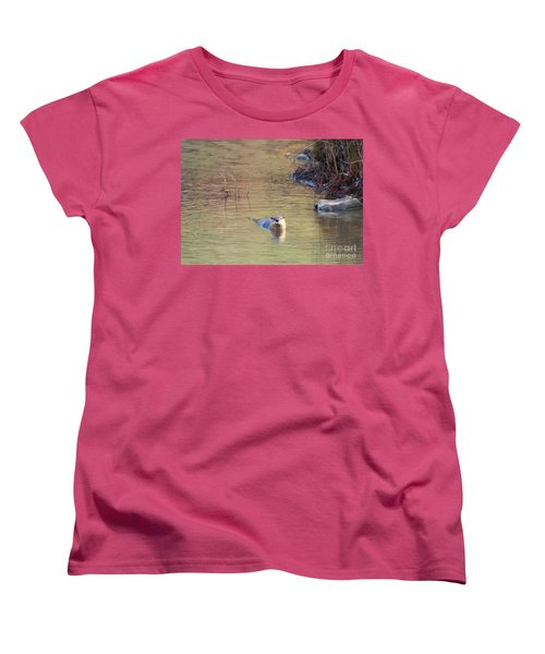 Sunrise Otter Women's T-Shirt (Standard Cut) by Mike Dawson