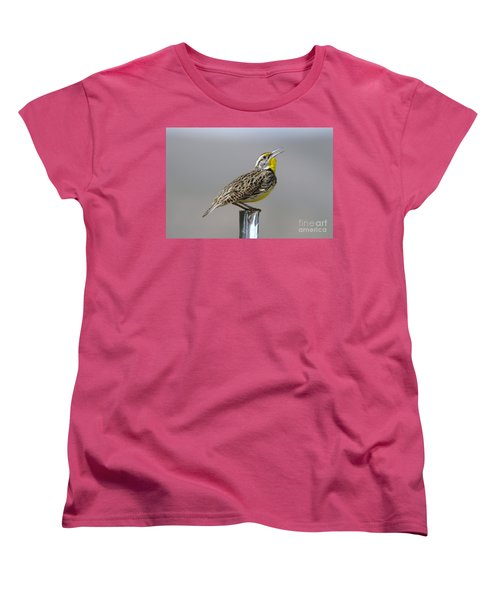The Meadowlark Sings  Women's T-Shirt (Standard Cut) by Jeff Swan