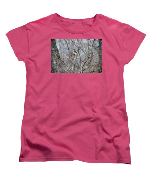 Cedar Wax Wing 3 Women's T-Shirt (Standard Cut) by David Arment
