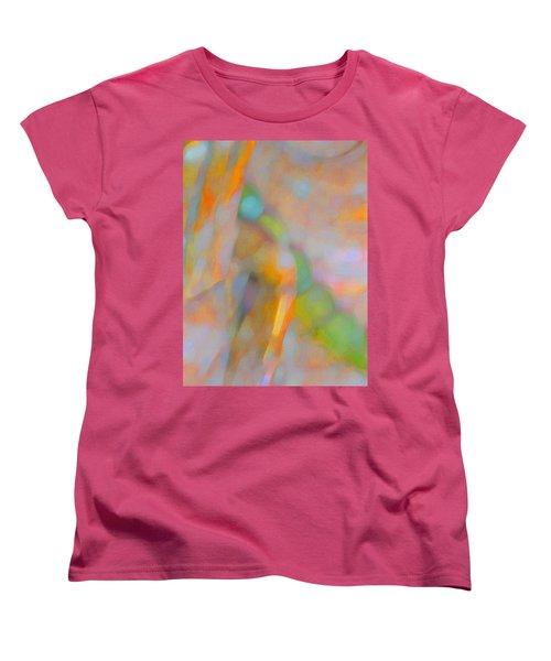 Women's T-Shirt (Standard Cut) featuring the digital art Comfort by Richard Laeton