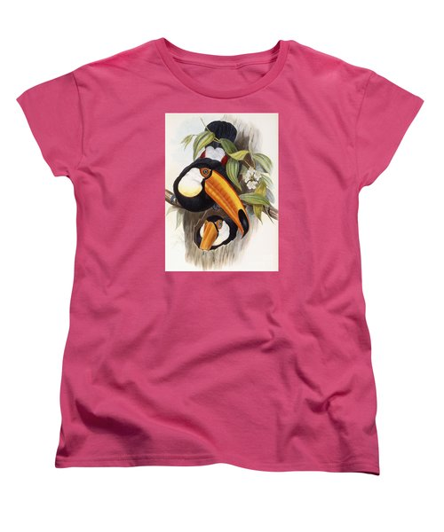 Toucan Women's T-Shirt (Standard Cut) by John Gould