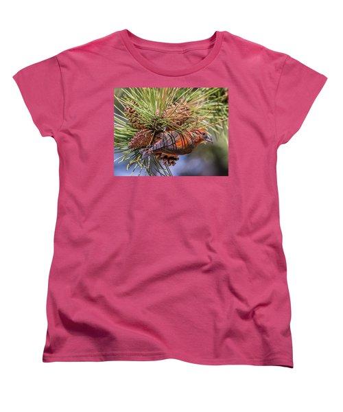 Red Crossbill Women's T-Shirt (Standard Cut) by Michael Cunningham