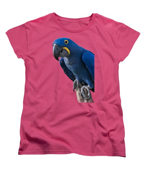 Blue Macaw Women's T-Shirt (Standard Cut) by Mark Myhaver