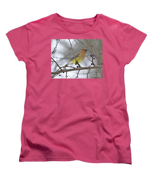 Cedar Wax Wing-2 Women's T-Shirt (Standard Cut) by Robert Pearson