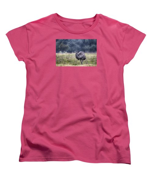 Early Morning Stroll Women's T-Shirt (Standard Cut) by Douglas Barnard