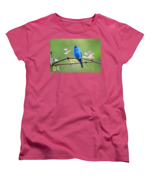 Indigo Bunting Perched Women's T-Shirt (Standard Cut) by Bill Wakeley