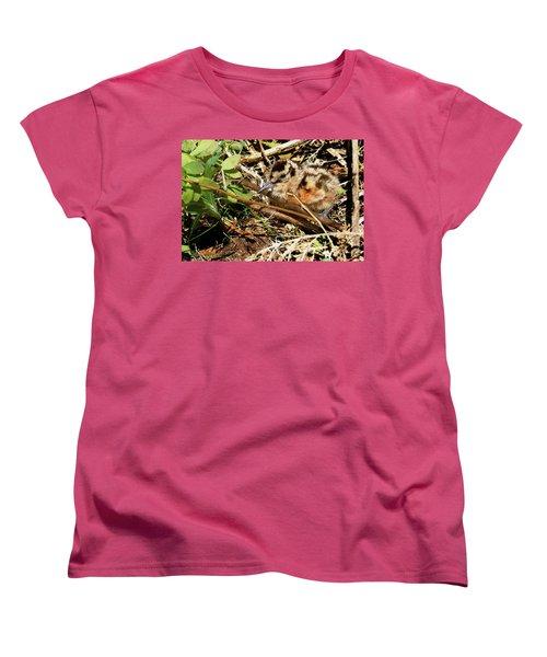 It's A Baby Woodcock Women's T-Shirt (Standard Cut) by Asbed Iskedjian