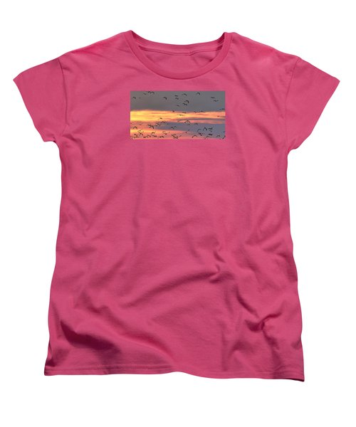 Lapwings At Sunset Women's T-Shirt (Standard Cut) by Jeff Townsend