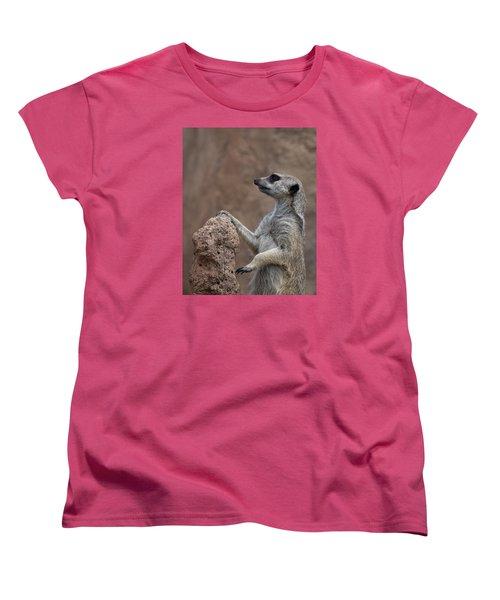 Pose Of The Meerkat Women's T-Shirt (Standard Cut) by Ernie Echols