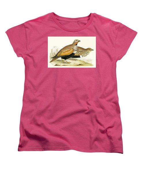 Sand Grouse Women's T-Shirt (Standard Cut) by English School