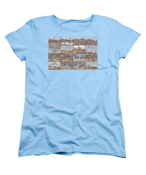 Birds Of Many Feathers Women's T-Shirt (Standard Cut) by Betsy Knapp