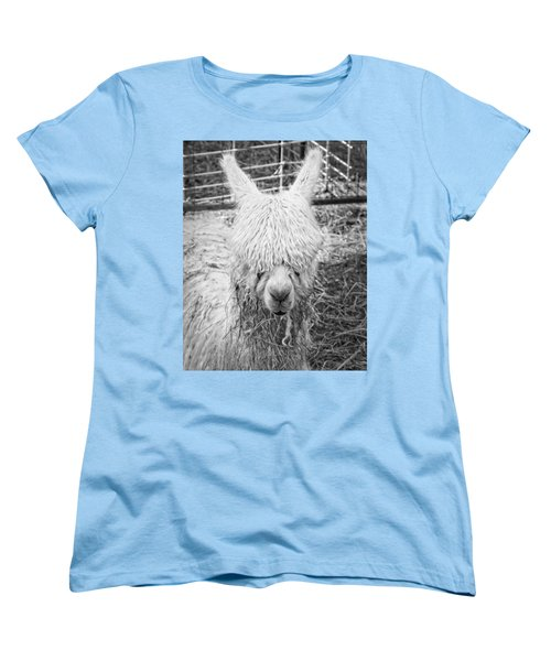 Black And White Alpaca Photograph Women's T-Shirt (Standard Cut) by Keith Webber Jr