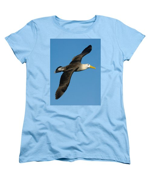 Waved Albatross Diomedea Irrorata Women's T-Shirt (Standard Cut) by Panoramic Images