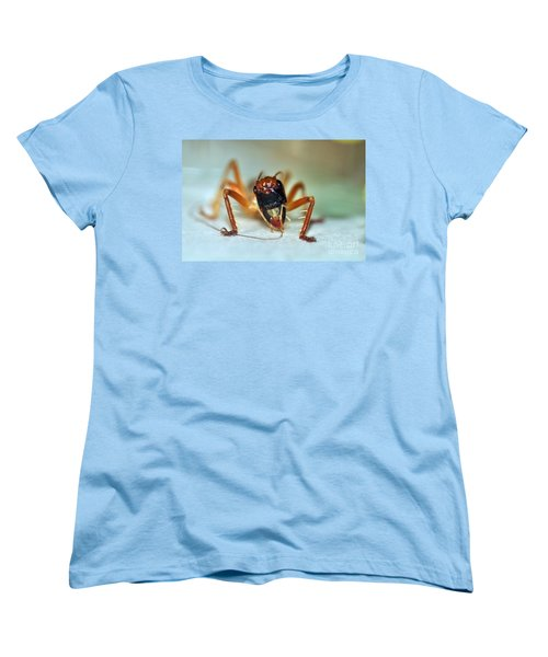 Jiminy Cricket Women's T-Shirt (Standard Cut) by Kaye Menner