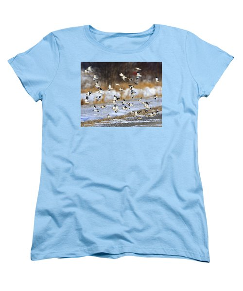 Snow Buntings Women's T-Shirt (Standard Cut) by Tony Beck