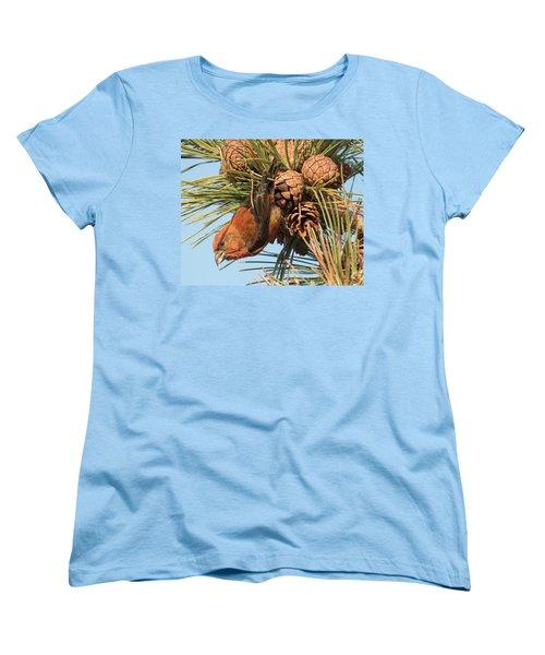 Crossbill Women's T-Shirt (Standard Cut) by Judd Nathan