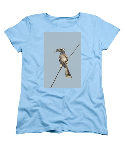 African Grey Hornbill Tockus Nasutus Women's T-Shirt (Standard Cut) by Panoramic Images