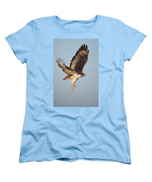 Augur Buzzard Buteo Augur Flying Women's T-Shirt (Standard Cut) by Panoramic Images