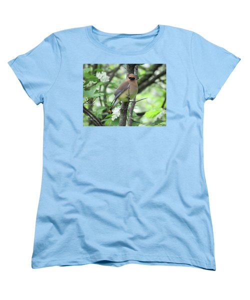 Cedar Wax Wing Women's T-Shirt (Standard Cut) by Alison Gimpel