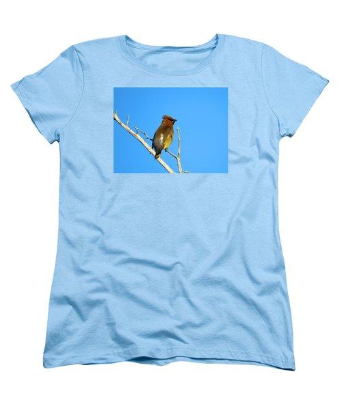 Cedar Waxwing Women's T-Shirt (Standard Cut) by Dianne Cowen