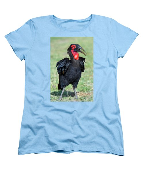 Close-up Of Ground Hornbill Bucorvidae Women's T-Shirt (Standard Cut) by Panoramic Images
