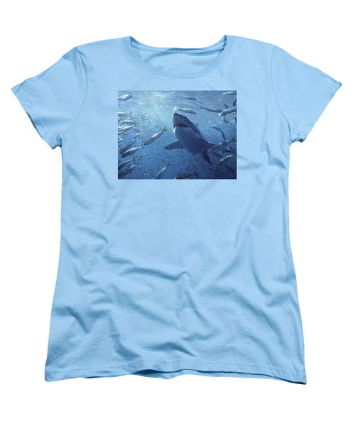 Great White Shark Carcharodon Women's T-Shirt (Standard Cut) by Mike Parry