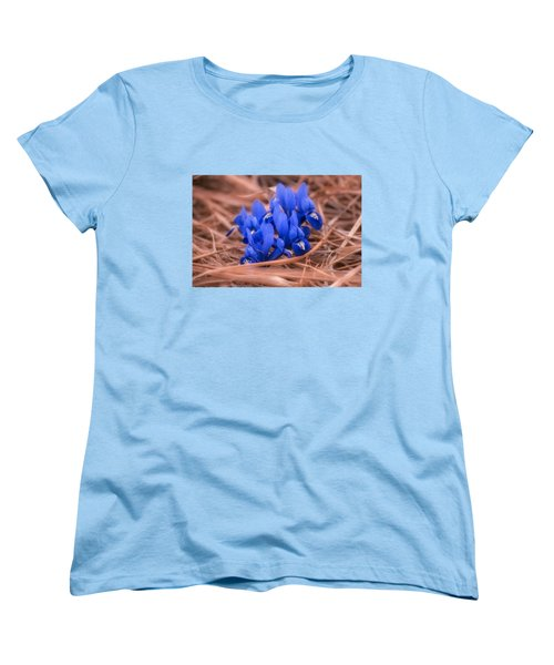 Irises Women's T-Shirt (Standard Cut) by Konstantin Sevostyanov