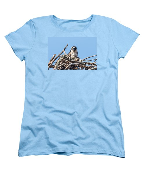 Osprey Eyes Women's T-Shirt (Standard Cut) by Paul Freidlund