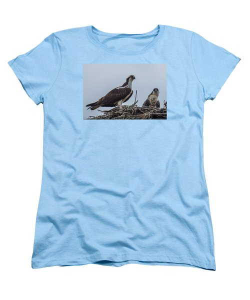 Osprey On A Nest Women's T-Shirt (Standard Cut) by Paul Freidlund