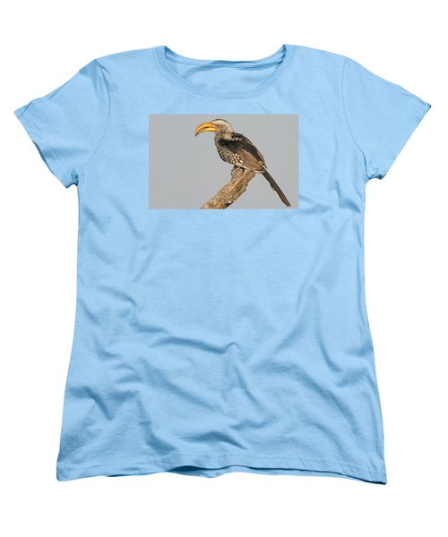 Southern Yellow-billed Hornbill Tockus Women's T-Shirt (Standard Cut) by Panoramic Images