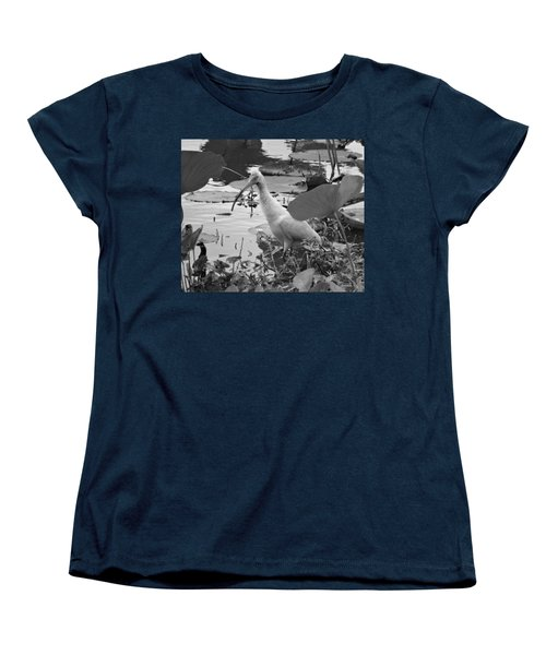 American White Ibis Black And White Women's T-Shirt (Standard Cut) by Dan Sproul