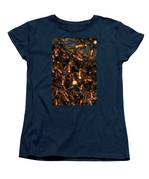 Army Ant Bivouac Site Women's T-Shirt (Standard Cut) by Gregory G. Dimijian, M.D.