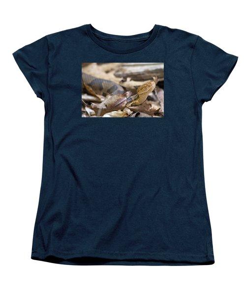 Copperhead In The Wild Women's T-Shirt (Standard Cut) by Betsy Knapp