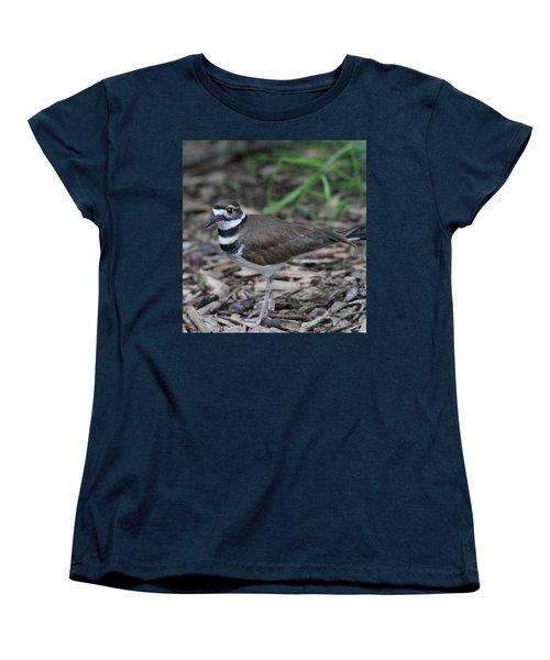 Killdeer Women's T-Shirt (Standard Cut) by Dan Sproul