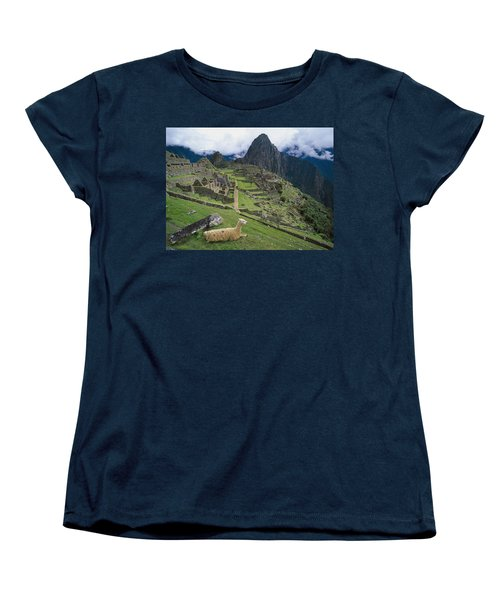 Llama At Machu Picchus Ancient Ruins Women's T-Shirt (Standard Cut) by Chris Caldicott