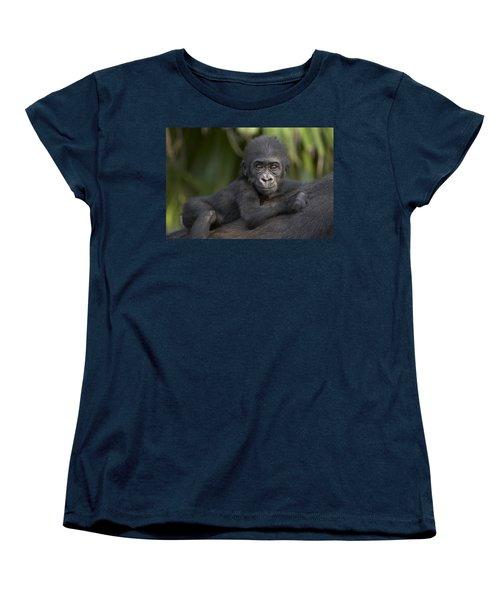 Western Lowland Gorilla Gorilla Gorilla Women's T-Shirt (Standard Cut) by San Diego Zoo